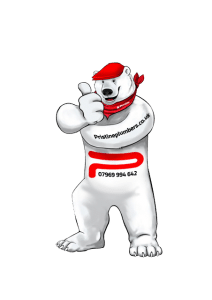 Pristine Plumbers Polar Bear Thumbs Up - Tel. 07969 994 642